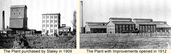 plant-photos